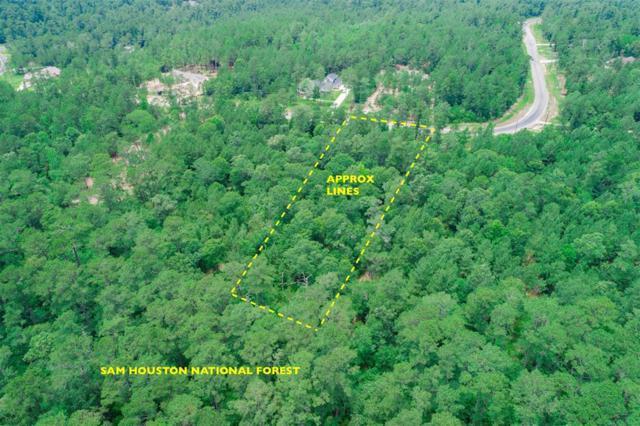 Lot 6 Dedication Trail, Huntsville, TX 77340 (MLS #51540547) :: Christy Buck Team