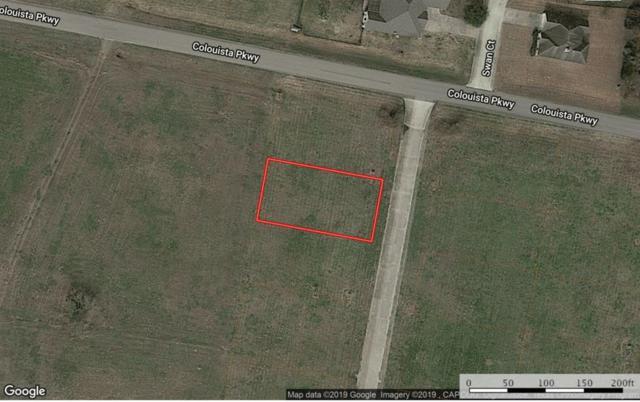 102 Sandpiper Drive, Bastrop, TX 78602 (MLS #51561430) :: The Freund Group
