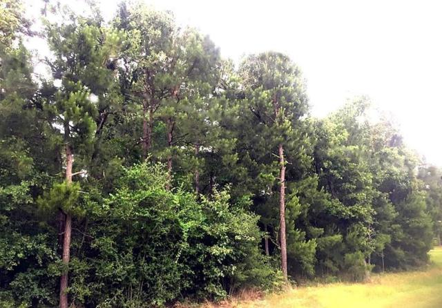 20710 Imperial Oak, Magnolia, TX 77355 (MLS #51641843) :: Krueger Real Estate