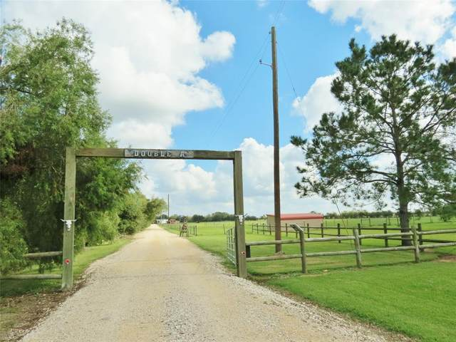 17343 June Bug Trail, Hamshire, TX 77705 (MLS #51707560) :: Green Residential