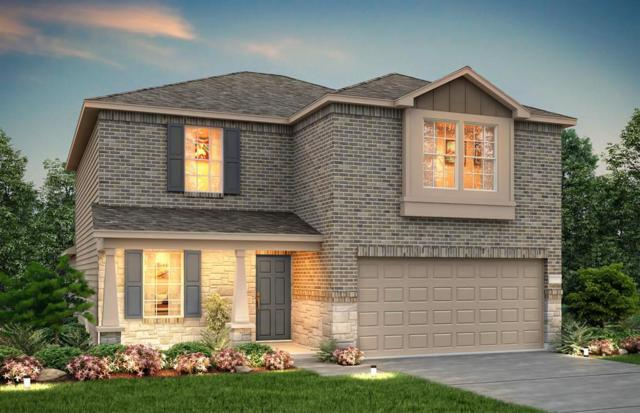 24034 Silver Sunset Lane, Katy, TX 77493 (MLS #51708261) :: The SOLD by George Team