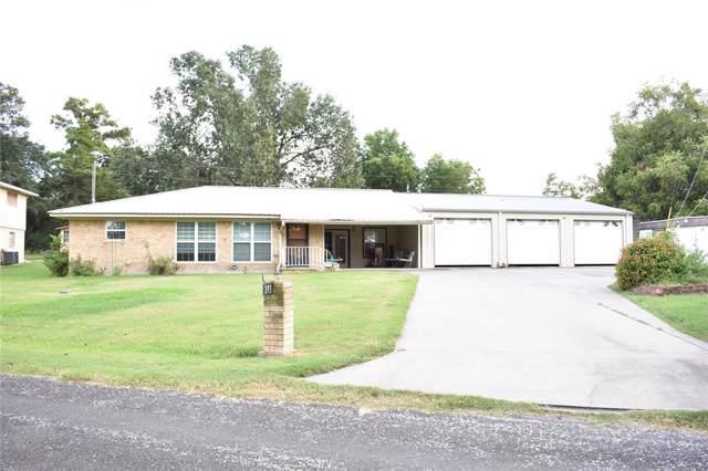393 Indian Shore, Livingston, TX 77351 (MLS #51713962) :: Green Residential