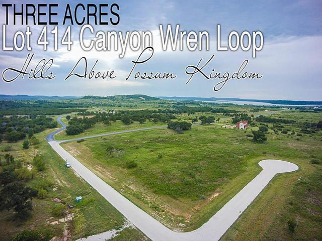 Lot 414 Canyon Wren Loop, GRAFORD, TX 76449 (MLS #51732034) :: TEXdot Realtors, Inc.