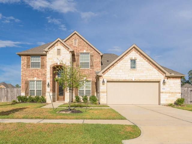 17910 Rushing Hollow Court, Tomball, TX 77377 (MLS #51736500) :: Fairwater Westmont Real Estate