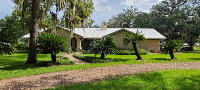 24161 County Road 332, Sweeny, TX 77480 (MLS #51848889) :: Connell Team with Better Homes and Gardens, Gary Greene