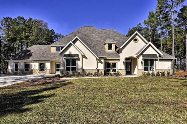 28303 Meadow Falls, Magnolia, TX 77355 (MLS #51879490) :: Krueger Real Estate