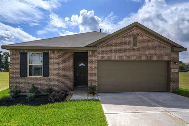 12776 Lake Conroe Bay Road, Willis, TX 77318 (MLS #51898170) :: The Home Branch