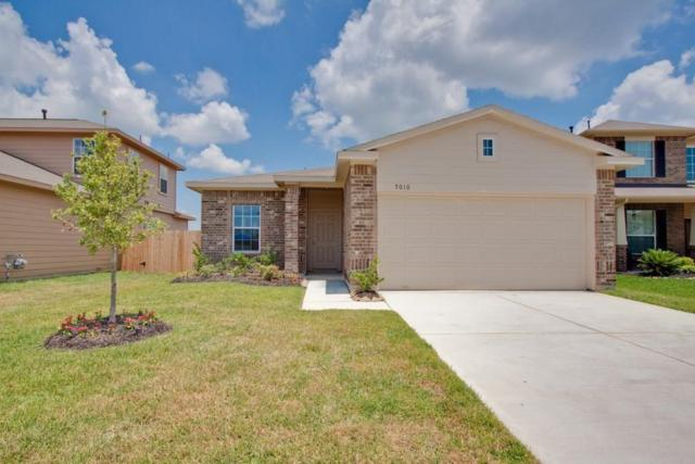 2409 Ivory Court, Texas City, TX 77591 (MLS #51920546) :: Connect Realty