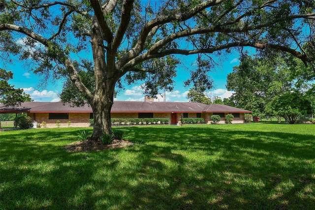 22 County Road 2267, Cleveland, TX 77327 (MLS #5204913) :: The Bly Team