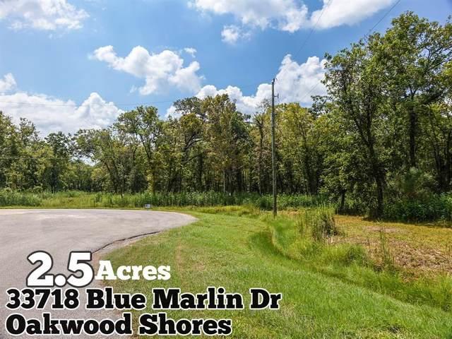 33718 Blue Marlin Drive, Richwood, TX 77515 (MLS #52133628) :: Keller Williams Realty