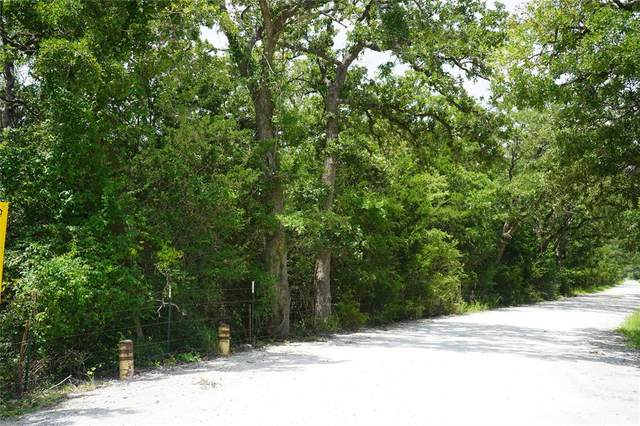 Lot 3 TBD County Road 190, Anderson, TX 77830 (MLS #52190610) :: The Sansone Group