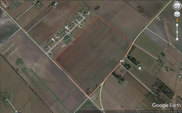 000 Fm 1236, Needville, TX 77461 (MLS #52200060) :: Connell Team with Better Homes and Gardens, Gary Greene