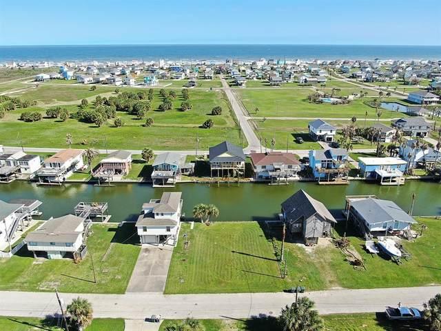 0 Vida Street, Galveston, TX 77554 (MLS #52202496) :: My BCS Home Real Estate Group