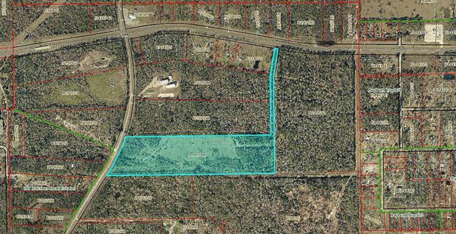 16621 Old Houston, Conroe, TX 77302 (MLS #52230824) :: Magnolia Realty