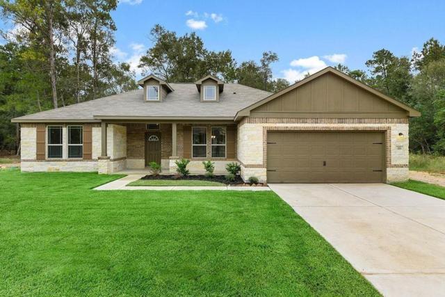 29701 Deerskin Drive, Hockley, TX 77447 (MLS #52303310) :: The Heyl Group at Keller Williams