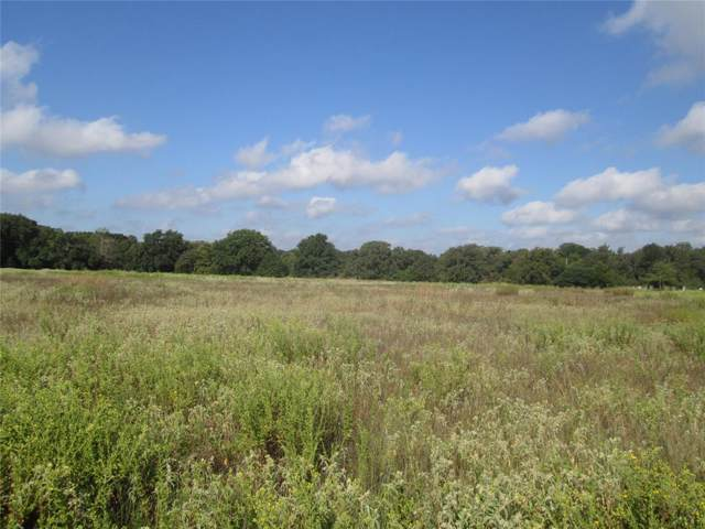 tbd Hwy 164, Groesbeck, TX 76642 (MLS #52322252) :: Connect Realty
