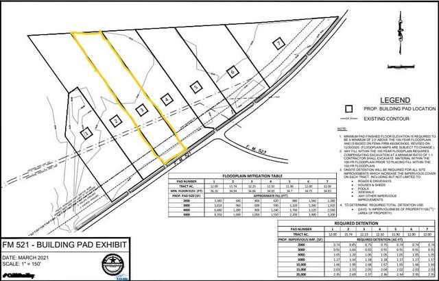 3 Fm 521, Angleton, TX 77515 (MLS #52371863) :: Lerner Realty Solutions