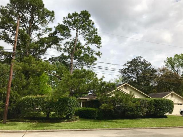 902 Hickorywood Lane, Houston, TX 77024 (MLS #52386641) :: The Home Branch