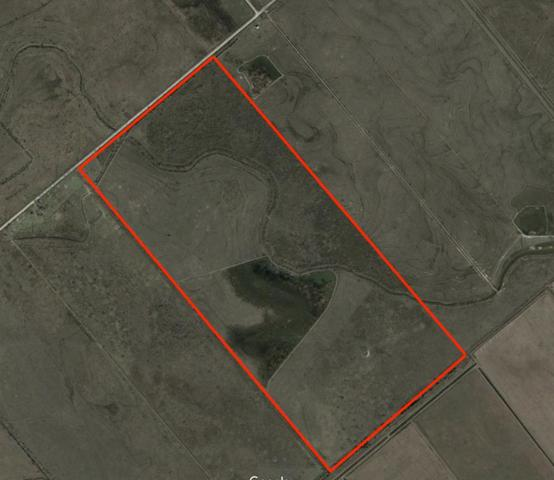 0 White Ranch Road, Sabine Pass, TX 77655 (MLS #52434709) :: Giorgi Real Estate Group