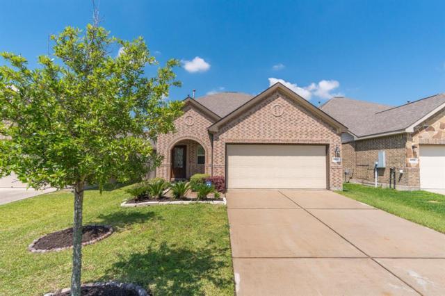 6872 Catalpa Bluff Lane, Dickinson, TX 77539 (MLS #52476961) :: Texas Home Shop Realty