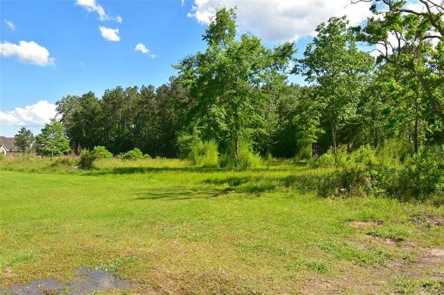 4618 Dunnam Place, Kingwood, TX 77345 (MLS #52477938) :: Green Residential