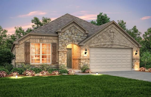 5310 Baroness Lane, Katy, TX 77493 (MLS #52489479) :: King Realty