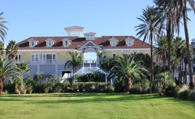 4107 Royal Tern Lane, Galveston, TX 77554 (MLS #52830452) :: The Heyl Group at Keller Williams