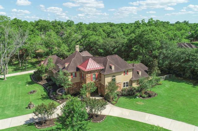 5203 Mimosa Lane, Richmond, TX 77406 (MLS #5288472) :: The Sansone Group