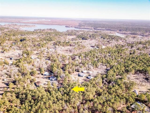 00 Thompson Street, Huntsville, TX 77320 (MLS #52926100) :: Green Residential