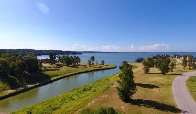 TBD Lot 6 Peninsula Drive, Livingston, TX 77351 (MLS #52935279) :: The SOLD by George Team