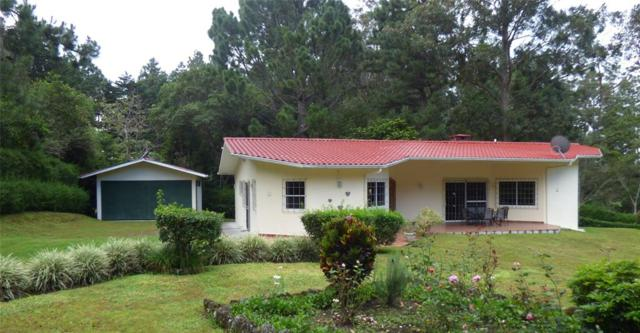 0 Quetzal Ave D Norte Paso Ancho Volcan Chiriqui, Other, TX  (MLS #52949779) :: The SOLD by George Team