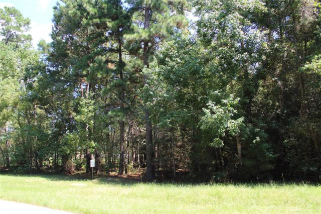 1602 Briar Grove Street, Magnolia, TX 77354 (MLS #53002897) :: The Collective Realty Group