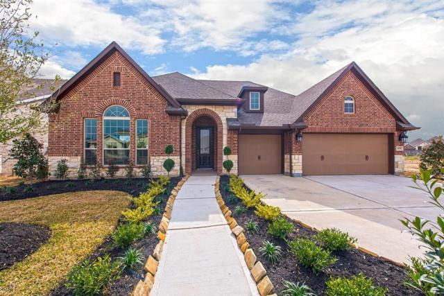 10226 Palmour, Missouri City, TX 77459 (MLS #53010339) :: Texas Home Shop Realty