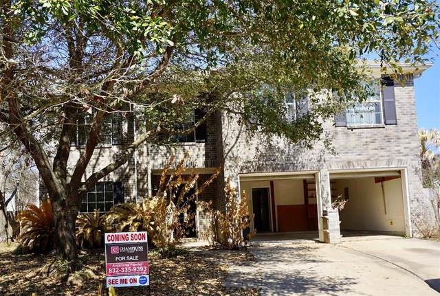 21006 Dryfalls Court, Katy, TX 77449 (MLS #53038206) :: Connell Team with Better Homes and Gardens, Gary Greene
