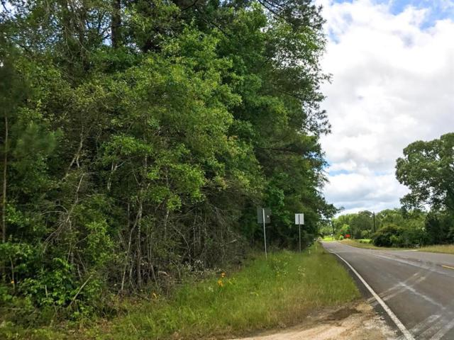 48 Ac Fm 1746, Woodville, TX 75979 (MLS #53045867) :: The SOLD by George Team