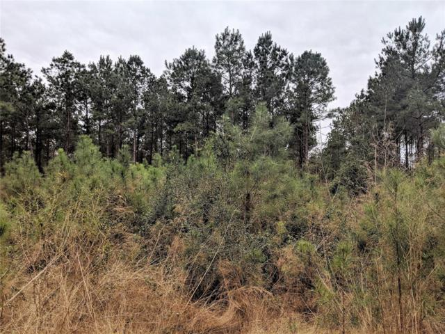- 36 Acres County Road  4416, Spurger, TX 77660 (MLS #53046593) :: The Heyl Group at Keller Williams