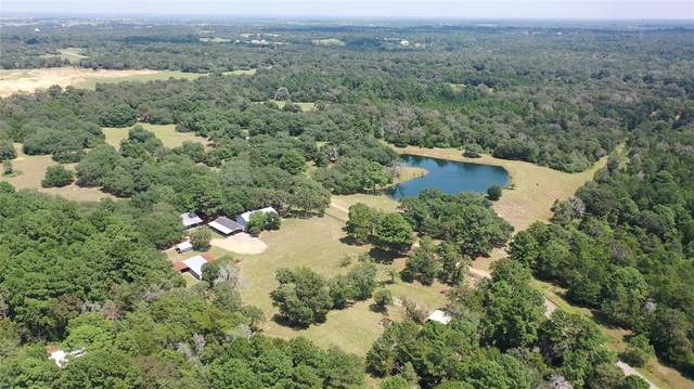 1111 Schuette Road, New Ulm, TX 78950 (MLS #53098555) :: All Cities USA Realty
