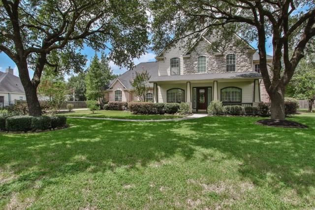 17514 N Yaupon Circle, Tomball, TX 77377 (MLS #53170172) :: Lion Realty Group / Exceed Realty
