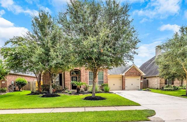 2919 Red Maple Drive Drive, Katy, TX 77494 (MLS #53209991) :: The SOLD by George Team