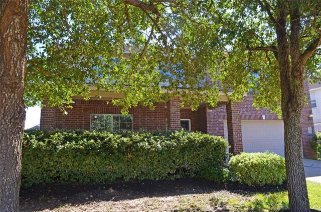 2305 Diamond Springs Drive, Pearland, TX 77584 (MLS #53210085) :: Christy Buck Team