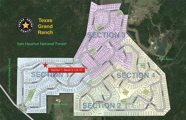 2-11-26 Red Hawk, Huntsville, TX 77340 (MLS #53237911) :: The Heyl Group at Keller Williams