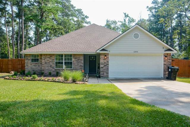 22914 Meadowsweet Drive, Magnolia, TX 77355 (MLS #53253315) :: The SOLD by George Team