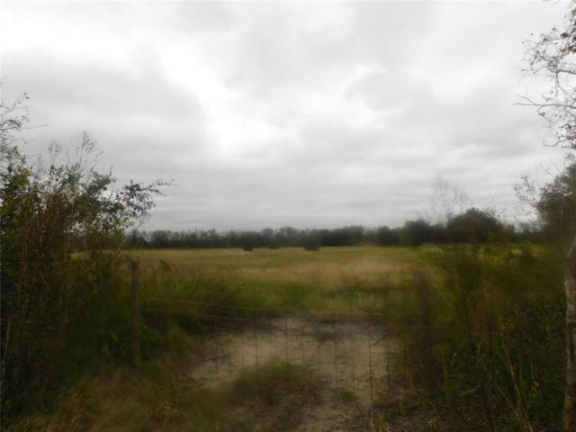 0 County Road 380, Rosharon, TX 77583 (MLS #53253461) :: Texas Home Shop Realty
