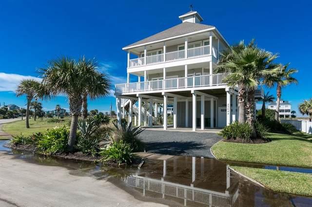 25602 Snowy Egret Drive, Galveston, TX 77554 (MLS #53280475) :: Texas Home Shop Realty