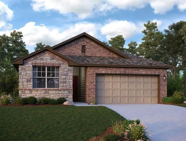 13309 Emerald Mallard Drive, Texas City, TX 77568 (MLS #53296478) :: The Wendy Sherman Team