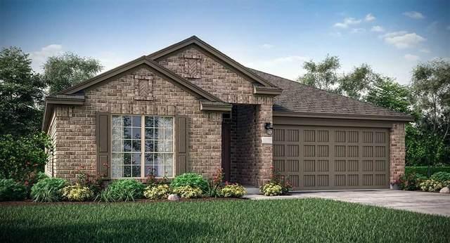 3052 Newcastle Crest Lane, Dickinson, TX 77539 (MLS #53384838) :: Texas Home Shop Realty