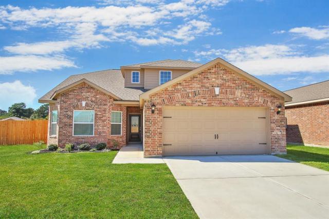 20922 Echo Manor Drive, Hockley, TX 77447 (MLS #53389141) :: Christy Buck Team