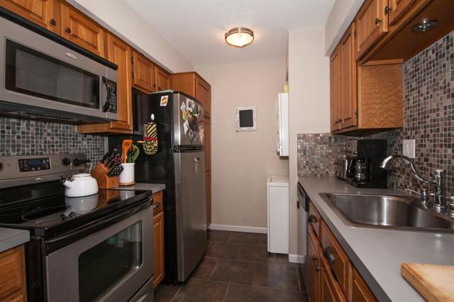 1860 White Oak Drive #386, Houston, TX 77009 (MLS #53423953) :: Giorgi Real Estate Group