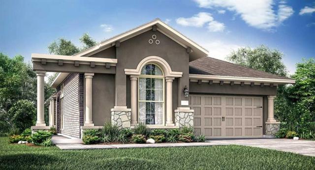 18707 June Grove Lane, Cypress, TX 77429 (MLS #53431274) :: KJ Realty Group
