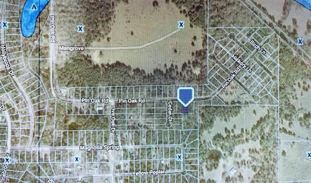 Lot 3 Pin Oak Drive, Plantersville, TX 77363 (MLS #5343476) :: The Home Branch